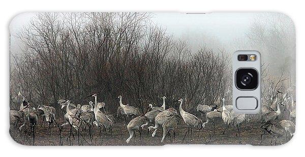 Sandhill Cranes In The Fog Galaxy Case by Farol Tomson
