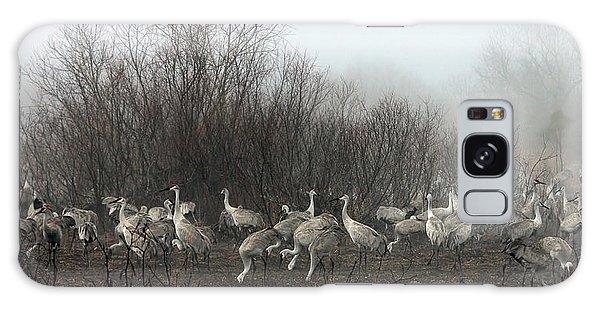 Sandhill Cranes In The Fog Galaxy Case
