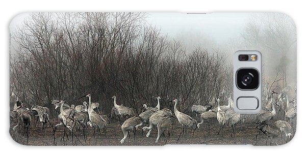 Sandhill Cranes In The Fog Galaxy Case