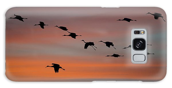 Sandhill Cranes Landing At Sunset Galaxy Case
