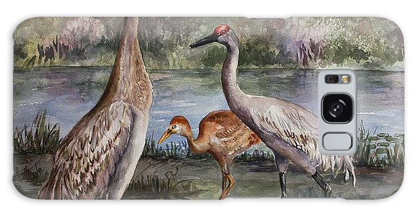 Sandhill Cranes On Alert Galaxy Case by Roxanne Tobaison
