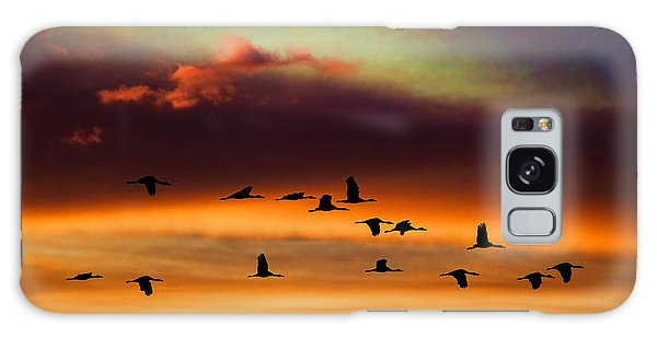 Sandhill Cranes Take The Sunset Flight Galaxy Case by Bill Kesler