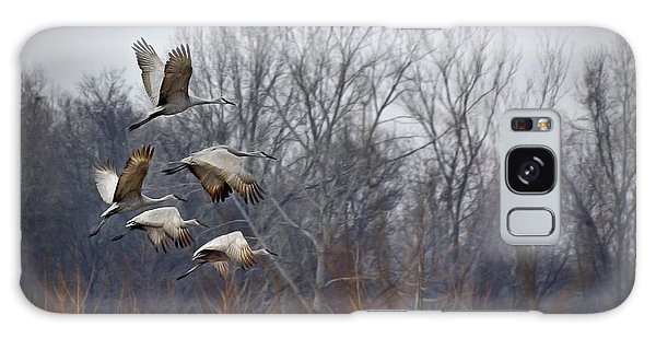 Sandhill Cranes Takeoff Galaxy Case