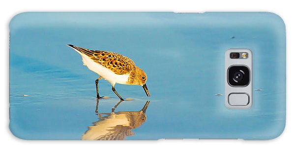 Sandpiper Mirror Galaxy Case