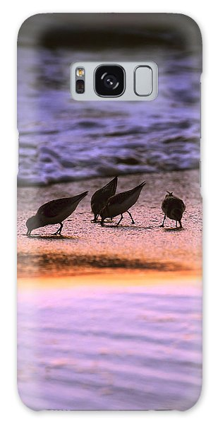 Sandpiper Morning Galaxy Case