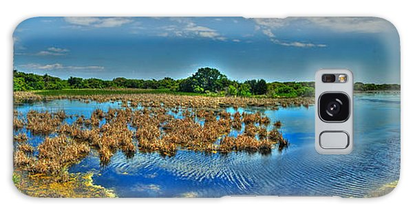 Sandpiper Pond Panorama Galaxy Case by Ed Roberts