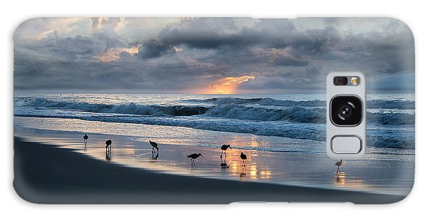 Sandpipers In Paradise Galaxy Case by Betsy Knapp