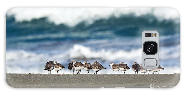 Sandpipers Keeping Warm On A Very Cold Day At The Beach Galaxy Case by Michelle Wiarda
