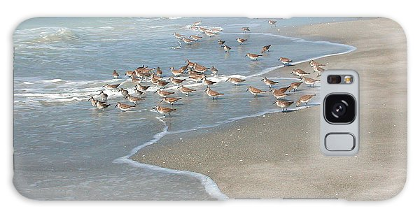 Sandpipers On The Beach Galaxy Case