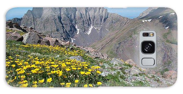 Sangre De Cristos Crestone Peak And Wildflowers Galaxy Case