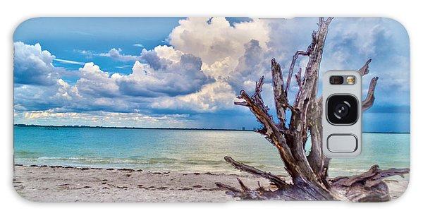 Sanibel Island Driftwood Galaxy Case by Timothy Lowry