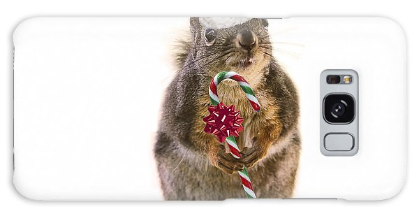 Santa Squirrel And Candy Cane Galaxy Case by Peggy Collins