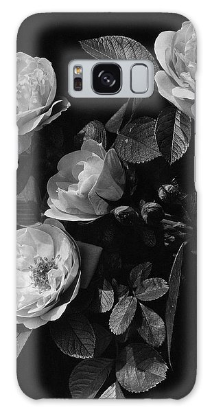 Sarah Van Fleet Variety Of Roses Galaxy Case