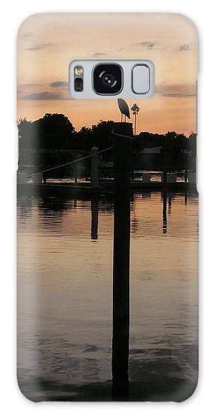 Sarasota Sunset Galaxy Case
