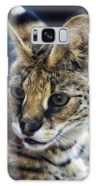 Savannah Jungle Cat Galaxy Case