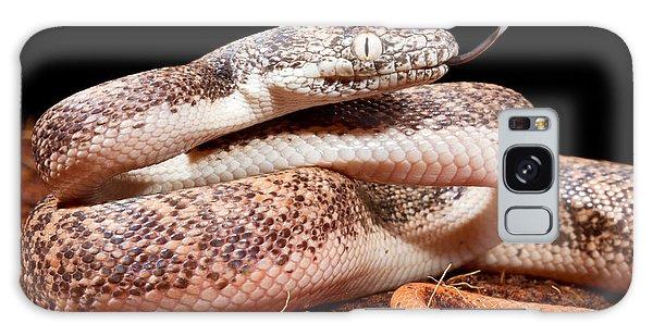 Savu Python In Defensive Posture Galaxy Case