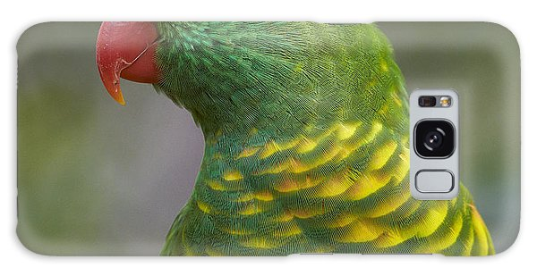 Martin Galaxy Case - Scaly-breasted Lorikeet Australia by Martin Willis