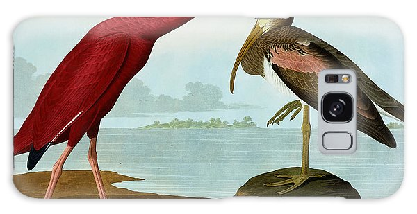 Scarlet Ibis Galaxy Case