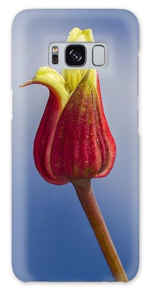 Scarlet Leatherflower Galaxy Case
