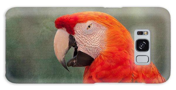 Macaw Galaxy Case - Scarlet Macaw by Kim Hojnacki