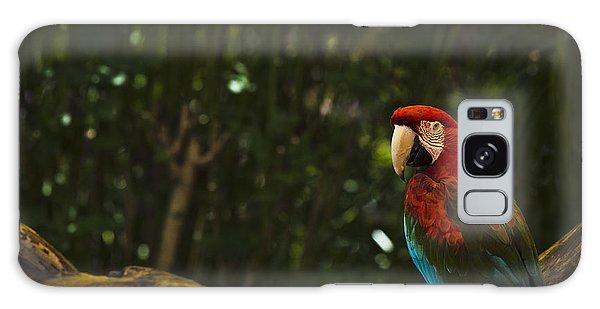 Scarlet Macaw Profile Galaxy Case