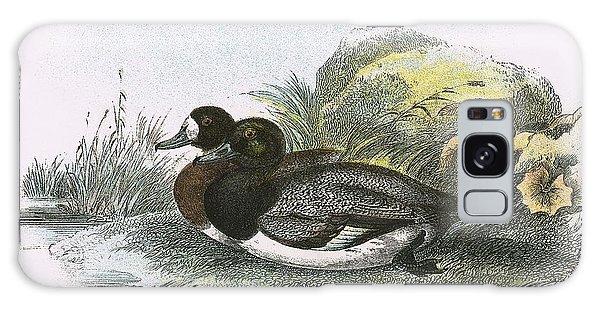 Scaup Duck Galaxy Case by English School