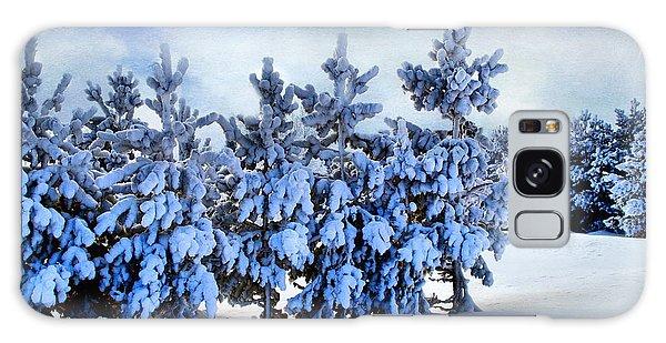 Scenic Winter  Galaxy Case