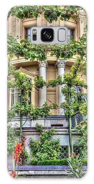 Schwerin Castle Windows. Galaxy Case