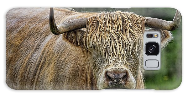 Scottish Highland Cattle Galaxy Case