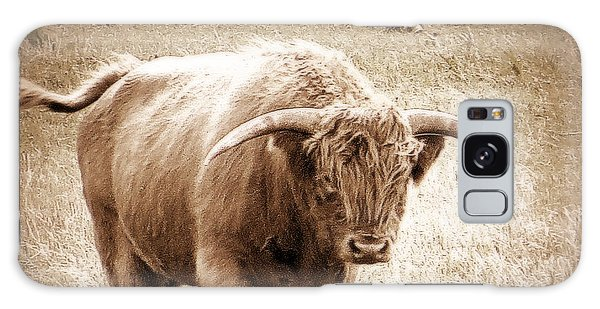 Scottish Highlander Bull Galaxy Case by Karen Shackles