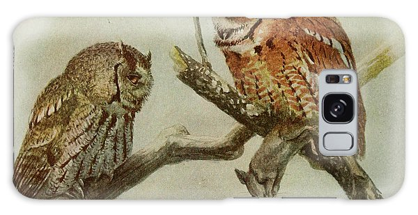 Screech Owls Galaxy Case by Dreyer Wildlife Print Collections