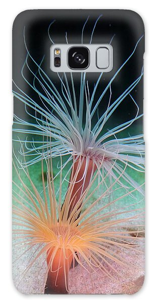 Sea Anemones Galaxy Case