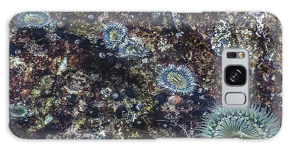 Sea Anenome Jewels Galaxy Case by Terry Rowe