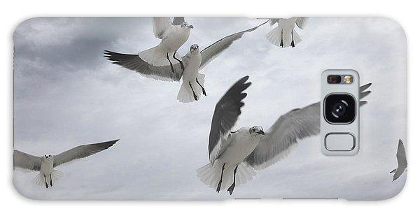 Sea Gull Aggression Galaxy Case
