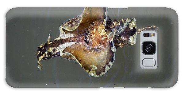 Sea Hare Asea Galaxy Case