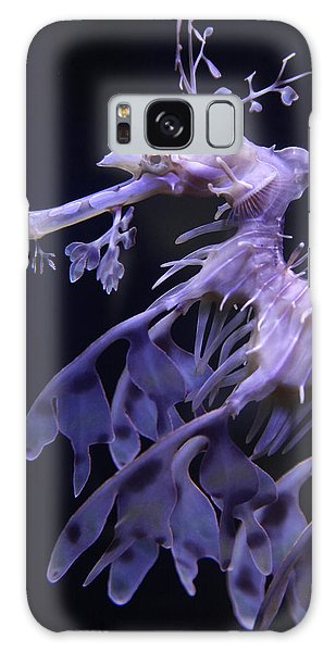 Sea Horse Galaxy Case