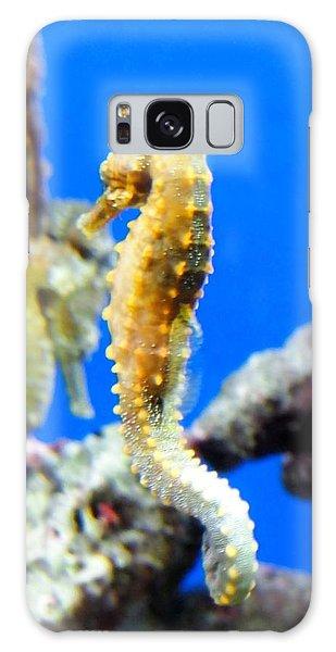 Sea Horses Galaxy Case by Amy McDaniel
