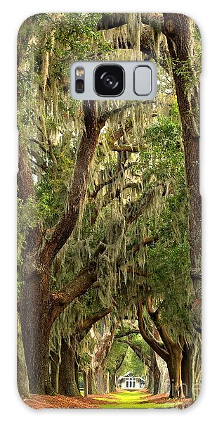 Sea Island Oaks Portrait Galaxy Case