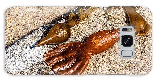 Featured Images Galaxy Case - Sea Jewels by Peter Tellone