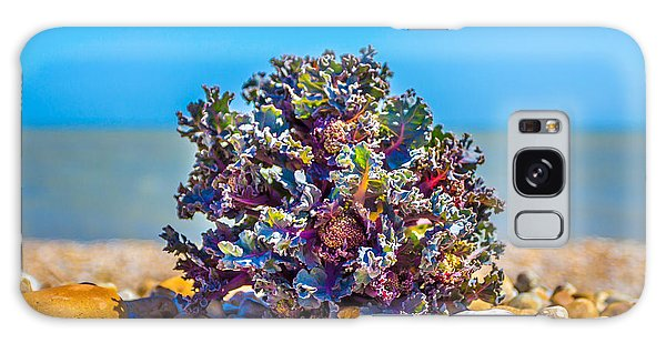 Sea Kale. Galaxy Case