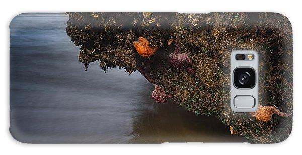 Sea Life Galaxy Case