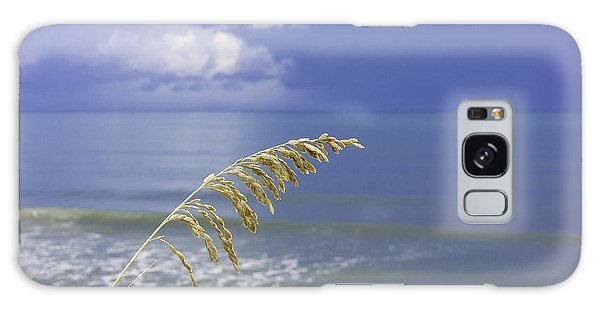 Sea Oats Ahead Of The Storm Galaxy Case by Karen Stephenson