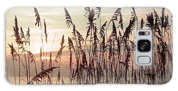 Spectacular Sea Oats At Sunrise Galaxy Case by Belinda Lee