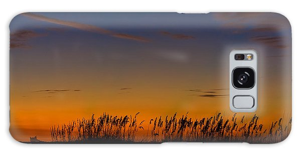 Sea Oats At Twilight Galaxy Case
