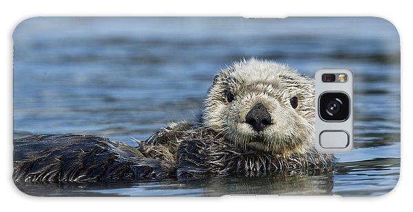 Otter Galaxy Case - Sea Otter Alaska by Michael Quinton