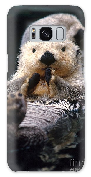 Otter Galaxy Case - Sea Otter Pup by Mark Newman