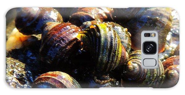 Sea Shells Galaxy Case by Karen Horn