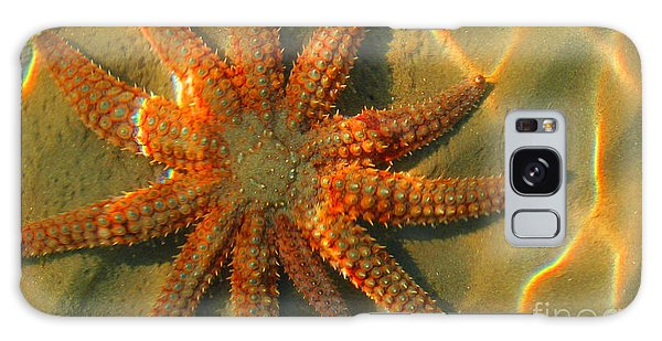 Sea Star Galaxy Case