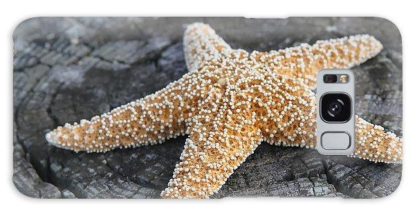 Sea Star On Post Galaxy Case