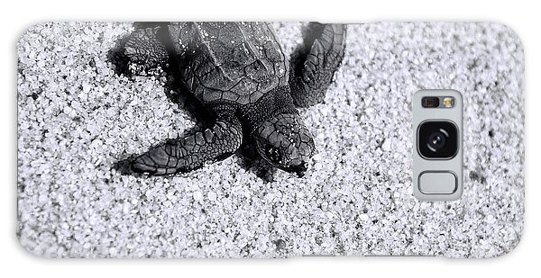 Sea Turtle In Black And White Galaxy Case